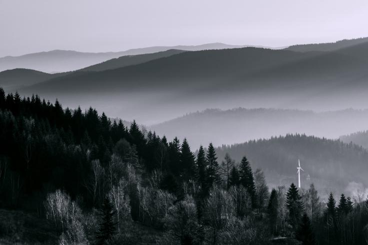 09-marek-hajdasz-image1